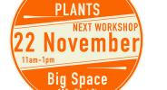 Kokedama Moss Ball Plants Workshop Big Space Ballarat