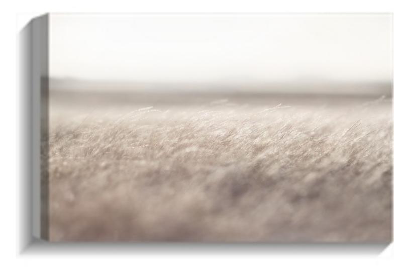Clunes fields photographic canvas print Aldona Kmiec Australian Landscapes