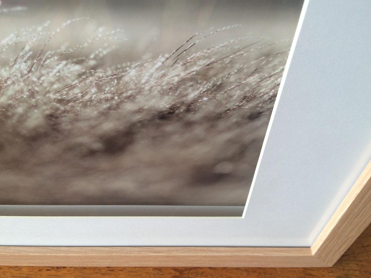 Fields at Clunes Aldona Kmiec Photography Australian Landscape Prints